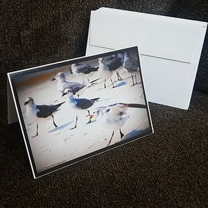 Sneaky Seagull Blank Cards (15)